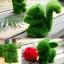 ตุ๊กตาหญ้าเทียม : RABBIT thumbnail 2