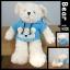 ตุ๊กตาหมีเสื้อสีฟ้ามีฮู้ด teddybear blue t-shirt with hood ขนาด 35 cm thumbnail 1