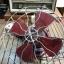พัดลมเพดาน Antique Imperiston Fan ของอังกฤษ ปี 1950 thumbnail 1