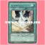 ANPR-JP045 : Release Restraint Wave / Restraint Release Wave (Rare) thumbnail 1