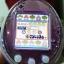 Tamagotchi iDL thumbnail 2