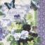 กระดาษแนปกิ้น เดคูพาจ 7725 butterfly and flower thumbnail 1
