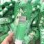 Ami Vegetta Body Lotion โลชั่นผักสดเอมิ โฉมใหม่แบบหลอด 100 ml. thumbnail 2