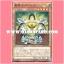 EP14-JP016 : Noble Knight Borz / Holy Knight Borz (Super Rare) thumbnail 1