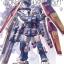 Full Armor Gundam Ver.Ka (Gundam Thunderbolt Ver.) (MG) thumbnail 1