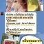 โลชั่นขิง by Faii cawaii หอมสะท้อนวงคการสมุนไพรไทย ใช้แล้วครั้งแรก ประทับใจ ที่สุด thumbnail 8