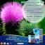 Auswelllife Liver Tonic 35000 mg. ออสเวลไลฟ์ ลิเวอร์ โทนิค 35000 มก.อาหารเสริมล้างตับ บรรจุ 60 แคปซูล thumbnail 5