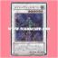 TSHD-JP043 : Splendid Rose (Ultimate Rare) thumbnail 1
