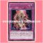 DREV-JP072 : Amazoness Willpower (Rare) thumbnail 1