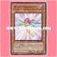 ANPR-JP002 : Sunny Pixie (Common) thumbnail 1