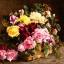 แนวภาพดอกไม้ ช่อดอกไม้บนโต๊ะ ภาพโทนสีน้ำตาลเข้ม เป็นภาพ 4 บล๊อค กระดาษแนพกิ้นสำหรับทำงาน เดคูพาจ Decoupage Paper Napkins ขนาด 33X33cm thumbnail 1