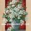 กระดาษสาพิมพ์ลาย rice paper สำหรับทำงาน เดคูพาจ Decoupage แนวภาพ ตกแต่ง บ้านและสวน ดอกไม้สีขาวในแจกันใบใหญ่มว๊าก สไตล์วินเทจ (ปลาดาวดีไซน์) thumbnail 1