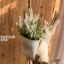 Pre-Order ตระกร้า ที่ใส่จดหมาย ดอกไม้ แขวนผนัง ปั้มพื้นผิวนูน ทำสีเก่า มี 3 ขนาด Zakka thumbnail 18