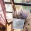 Pre-Order ตระกร้า ที่ใส่จดหมาย ดอกไม้ แขวนผนัง ปั้มพื้นผิวนูน ทำสีเก่า มี 3 ขนาด Zakka thumbnail 16