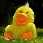 ตุ๊กตาสัตว์เลี้ยง ของเล่นช่วยเสริมพัฒนาการได้ดี