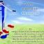FTL-17อุปกรณ์บิดเอวและย่ำเท้าสลับอุปกรณ์บิดเอวและย่ำเท้าสลับ thumbnail 1